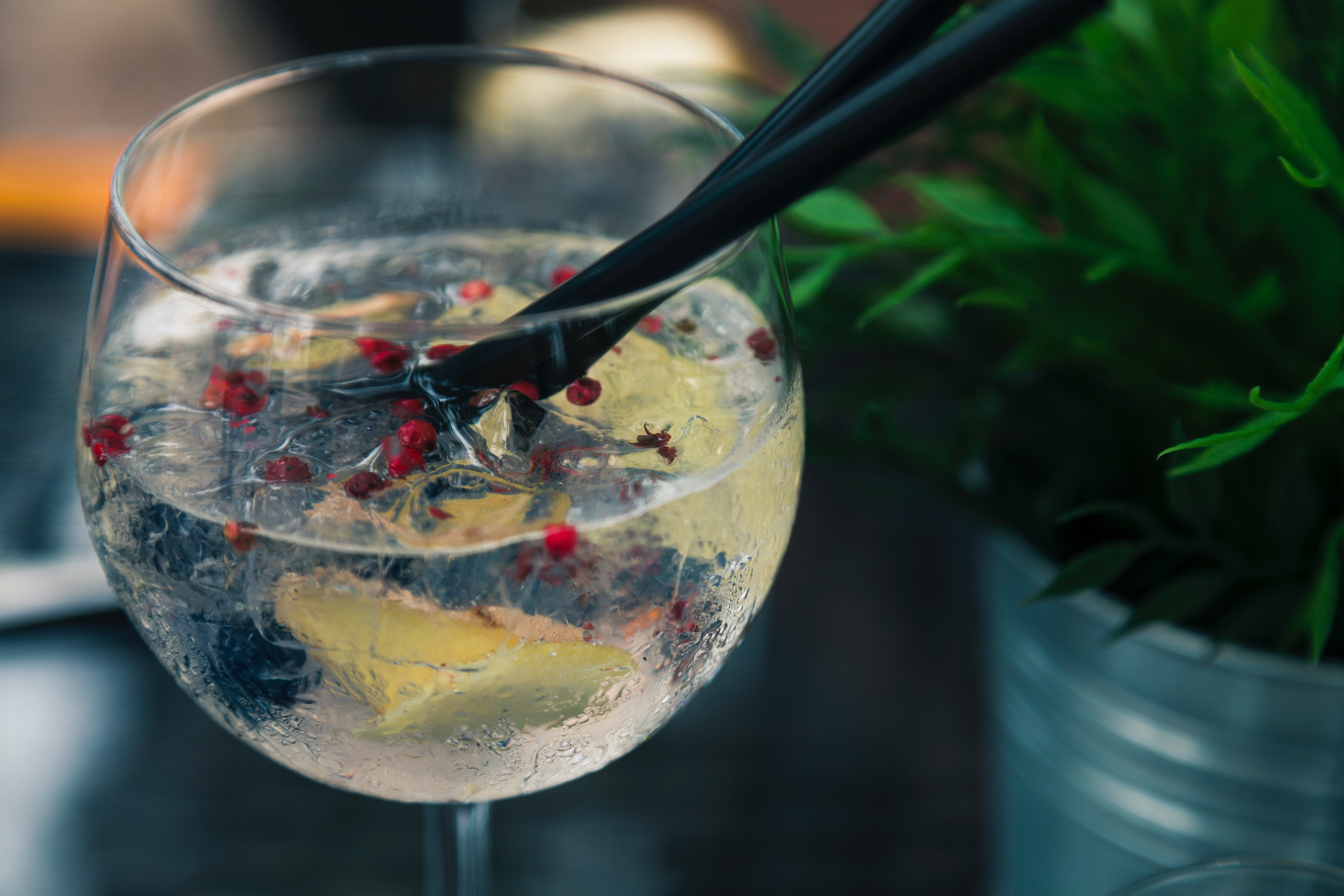 A gin lover's guide to Cape Town